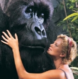 charlize-theron-mighty-joe-young